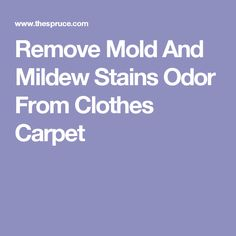 How To Remove Mildew From Refrigerator Gaskets Cleaning
