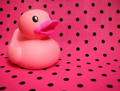 PINK rubber ducky