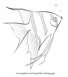 Underwater Ocean Scene Coloring Page In Grey Scale Beautiful After Colored With Pencils