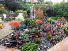 "Gorgeous succulent landscape. This is called the ""South Western Style."" Some people don't expect this type of style to be so colorful, but it definitely can!"