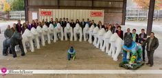 Urban gorillas! Sponsors, friends, media & gorillas unite for photo shoot. Just wait until they are all painted!