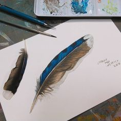 Hi friends! Today I will show you how to draw and paint a feather by using a series of built up layers, or glazes, or color! Watch the video to see how! I hope you give this a try! It is not hard, …