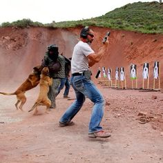 Chris Costa plus dog