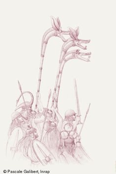 Warrior Drawing, Celtic Warriors, Picts, Antiques, Drawings, Illustration, Protohistory, Barbarian, Warriors