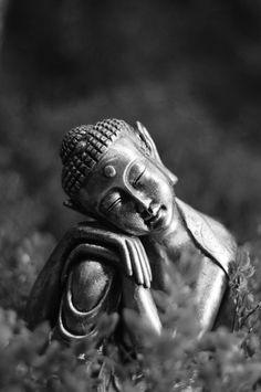 *Buddha - Zen