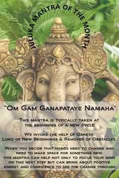 """Juluka's January 2015 Mantra of the Month is: """"Om Gam Ganapataye Namaha"""" evoking the power of Ganesh to help us bust through those obstacles and help us with new beginnings! Sanskrit Quotes, Sanskrit Mantra, Vedic Mantras, Hindu Mantras, Yoga Mantras, Yoga Meditation, Ganesha, Om Gam Ganapataye Namaha, Namaste"""
