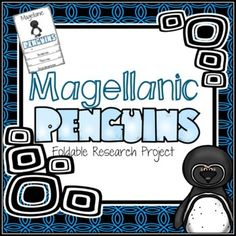 Magellanic Penguin Research Foldable ~ FREE Penguin Research, Research Projects, Rubrics, Penguins, Texts, Paragraph, Homeschool, Notes, Student
