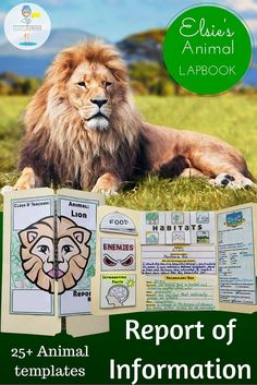GIve your kiddos a chance to FALL IN LOVE with their favorite animal! Great for even your most reluctant researcher.  All the templates and foldables necessary to create this comprehensive lapbook.