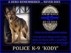St. Paul Police Department, MN  Police K-9 'KODY'  End Of Watch: 02-12-13  K-9 KODY, 9, was stabbed to death while protecting his fellow Officers.  Rest In Peace Police K-9 'Kody'   http://www.odmp.org/k9