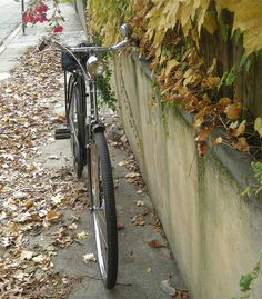 A.T.'s Raleigh DL-1: Front View by Lovely Bicycle!, via Flickr