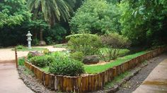 O Jardim Imperial Japonês foi construído como forma de homenagear a visita do então príncipe do Japão à Maringá. #maringá