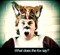"Watch ""THE FOX"" music video by Ylvis on YouTube!!"