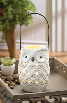 White Owl Lantern - great indoors and outdoors