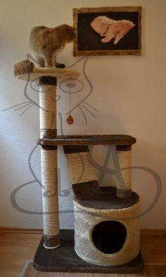 gimnasio para gatos casero - Buscar con Google