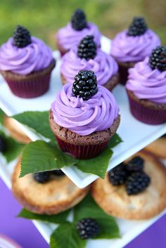 Blackberry Cupcakes + Mini Pies------no recipes but gorgeous pictures that inspire me to find a way. Blackberry Cupcakes, Yummy Cupcakes, Mini Cupcakes, Snicker Cupcakes, Fruit Cupcakes, Cheesecake Cupcakes, Coconut Cupcakes, Lemon Cupcakes, Vanilla Cupcakes