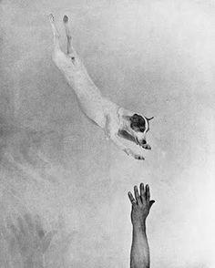 Martin Munkácsi, Jumping fox terrier, ca. 1930