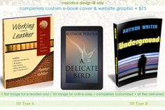 Melodica Design's Custom E-Book Cover Design & 3D Graphic (updated for 2015!)  Professional and completely custom e-book cover design, plus 3D