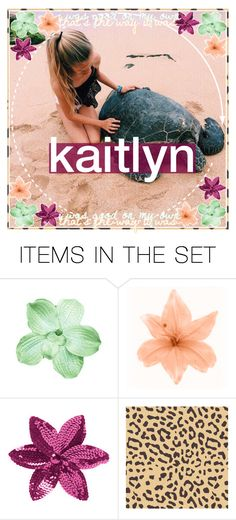 """kaitlyn's icon contest !"" by briannamariecardenas ❤ liked on Polyvore featuring art, iconsbybriannamarie and kaitsweet16contest"