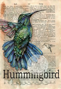hummingbird mixed media drawing on distressed dictionary page - via Etsy - Flying Shoes Art Studio