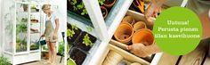 miniature green house