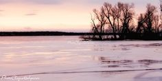 Evening Glow in Winter / Atmospheric Landscape - Frozen Seascape Scene / Fine Art Photography Print Shopping Spree, Go Shopping, Wall Groupings, Shop Around, Where The Heart Is, Fine Art Photography, Life Is Good, Glow, Scene