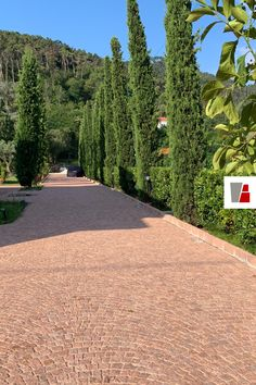 Alpine Rose Porpyry cube sett pavement for this private driveway. Natural split surface and traditional arc laying pattern. Pavement, Cube, Surface, Sidewalk, Traditional, Natural, Pattern, Model, Nature
