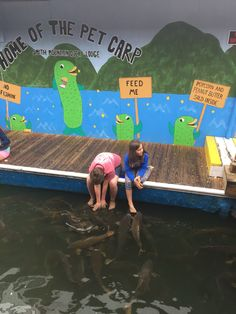 """Smith Mountain Lake, VA  """"Pet"""" carp feed on popcorn and peanut butter sold there. Most folks put the peanut butter on their feet for the fish to eat off"""