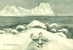 Kunstnerkort Thorolf Holmboe Helgelandskysten 1910/20-tallet
