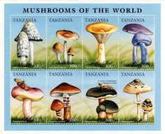 Flora - Fauna on stamps: Mushrooms of the world on the stamps of Tanzania