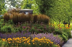 Rain Gardens And Bioswales: Attractive, Eco Friendly Stormwater Solutions · Landscaping  Front ...