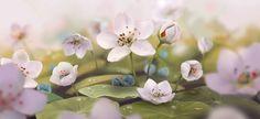 Serenity , Janice Su...@Hi哈采集到写实风景气氛图(710图)_花瓣