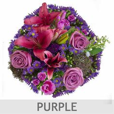 Mountain Bouquet (growers Choice) 10 Bouquets, 150 Stems - Multiple Color Options Available