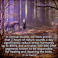 2 hours of nature sounds a day significantly reduce stress hormones up to and activates DNA segments known to be responsible for healing and repairing the body-Dr Joe Dispenza Nature Sounds, All Nature, Nature Pics, Fitness Workouts, Fitness Tips, Holistic Healing, Natural Healing, Holistic Wellness, Ayurveda