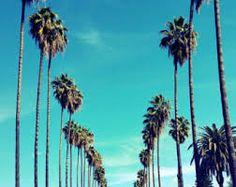 Image result for 80s art palm tree skyline sun set