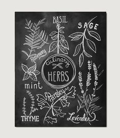 This listing is for a Print of my original Culinary Herbs hand lettered & illustrated chalk design. This modern print would make a lovely addition to