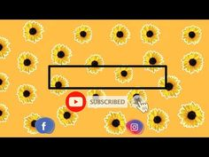 Free Intro Sunflower Template | No Text - YouTube