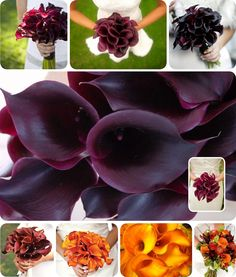 So pretty!  Love the color scheme here and calla lillies are so gorgeous and classic with anything