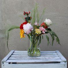 Mis Flores en Casa - Ramo Precioso 15 al 30 de Junio