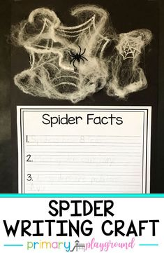 A fun addition to your nonfiction spider unit. Have your students write facts about spiders they've learned and then they can create their own webs!