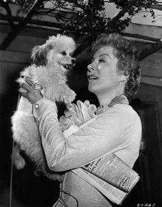 Greer Garson #ASGvets #vintage #celeb #pup
