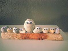 Familie Stones°•○●