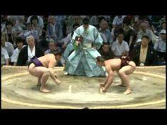 隆の山俊太郎 - (相撲) Long Full Mountain Shuntaro - (sumo) | Sumo is more than just giant size. It requires hard work and development of skills.