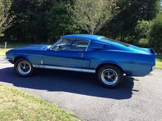 """American Muscle Cars… Rare 1967 Ford Mustang GT500 Shelby Cobra,428 8V """"Acapulco Blue"""""""