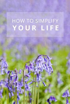 How to Simplify Your Life. Self-care. Personal And Professional Development, Simple Living, Your Life, Creative Business, Self Care, Minimalism, About Me Blog, Mindfulness, Calm