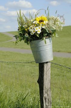 flowers in bucket on pasture fence
