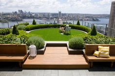 """This spectacular rooftop garden is hidden between the skyscrapers in Sydney, Australia. The ultimate secret garden. Hidden over 25 floors above the city. Designed by Secret Gardens: """"Buxus hedging and topiary cones add a formal element whilst iris and lavender create a whimsical effect. Timber seating frames the garden providing a place to sit and enjoy the garden and the amazing harbour views"""""""
