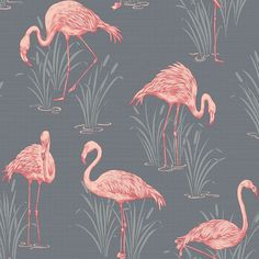 Arthouse Lochs & Lagoons Collection Lagoon Grey/Coral Flamingo Wallpaper. The design interprets the trend for conversational design and puts the twist on the traditional. The result in an eclectic vibe that can be co-ordinated or personalised. Create a stunning feature wall or immerse yourelf in flamingos. The wallcoverings within the collection have been developed to co-ordinate throughout the home - even in the bathroom! Click to shop for yours.