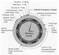 Origin and evolution of life into a 24 hour clock; source: History of life, Department of Geoscience of the University of Wisconsin, USA Earth Science, Science And Nature, Image Emotion, 24 Hour Clock, Time Clock, History Of Earth, John Barrowman, Before Midnight, Midnight City