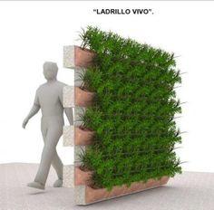 Ladrillo Vivo, un muro verde, capaz de sostener cultivos verticales y jardines.