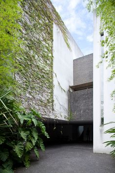 The House of Architect Pedro Useche: A Shelter for His Art with Amazing Panoramas